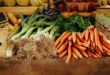 קרנות איריות - IMID ו-VWRA - גזרים ובצלים בשוק על דוכן